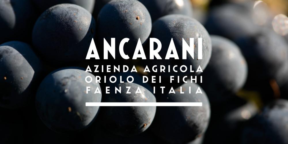 ANCARANI-Horizontal-00